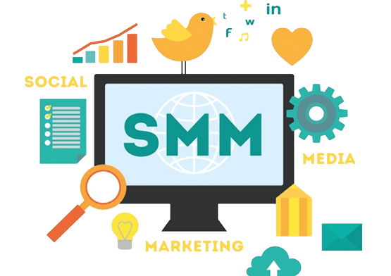 SofticWeb Offer SMM in Pakistan for businesses at the cheapest rate